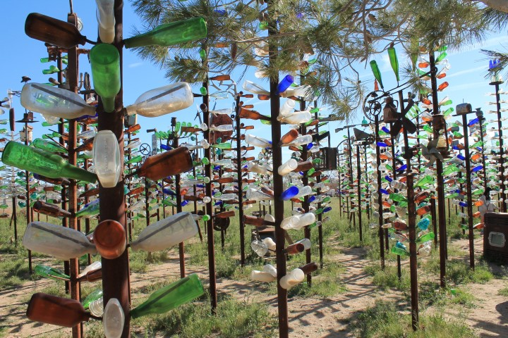 Bottle-Tree-Ranche21.JPG