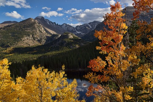 RockyMountainNationalParkFoliage.jpg