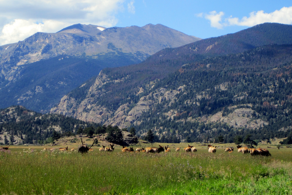 rocky-mountain-national-park-summer.jpg