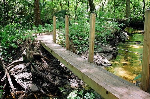 Jacksonville-Arboretum-and-Gardens.jpg