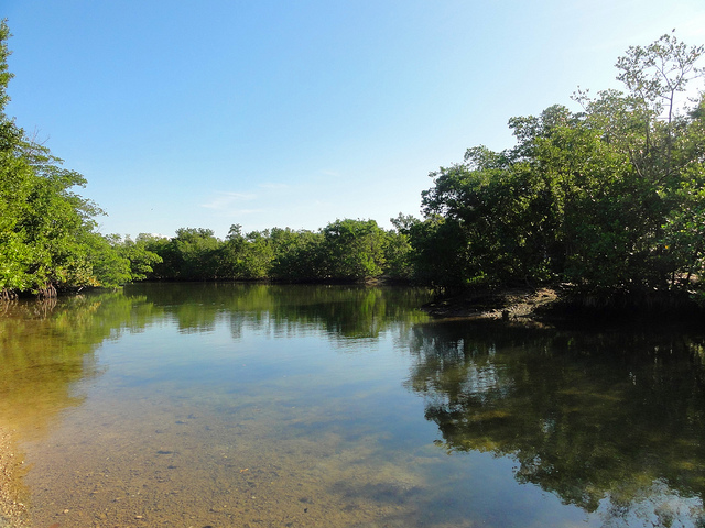 Oleta River State Recreation Park
