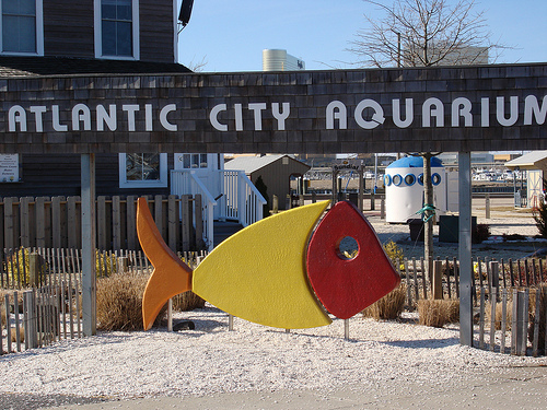 atlantic_city_aquarium.jpg