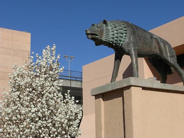 University-of-New-Mexico.jpg