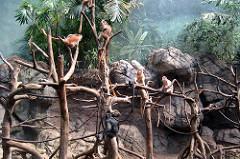 bronx-zoo-12.jpg