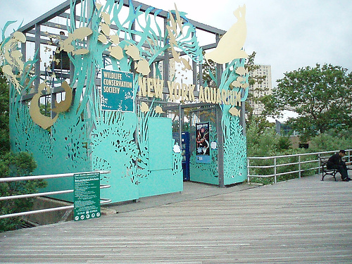 new_york_aquarium.jpg