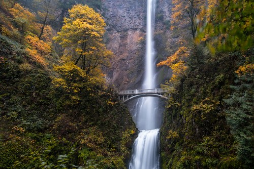 columbia-river-gorge-foliage.jpg