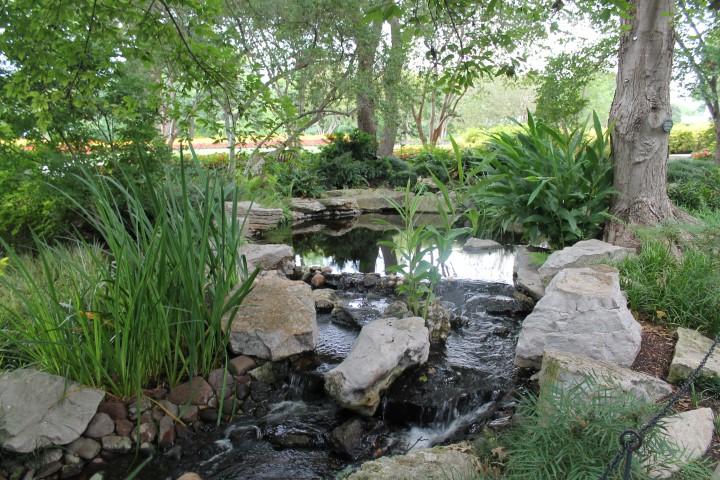 dallas-arboretum-1.JPG