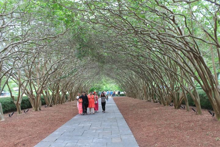dallas-arboretum-11.JPG