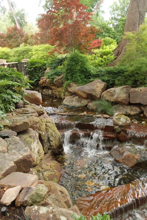 dallas-arboretum-7.JPG