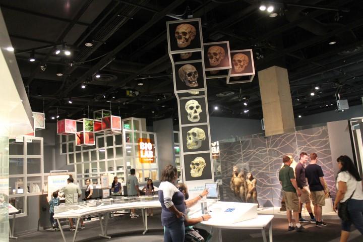 PerotMuseum13.JPG
