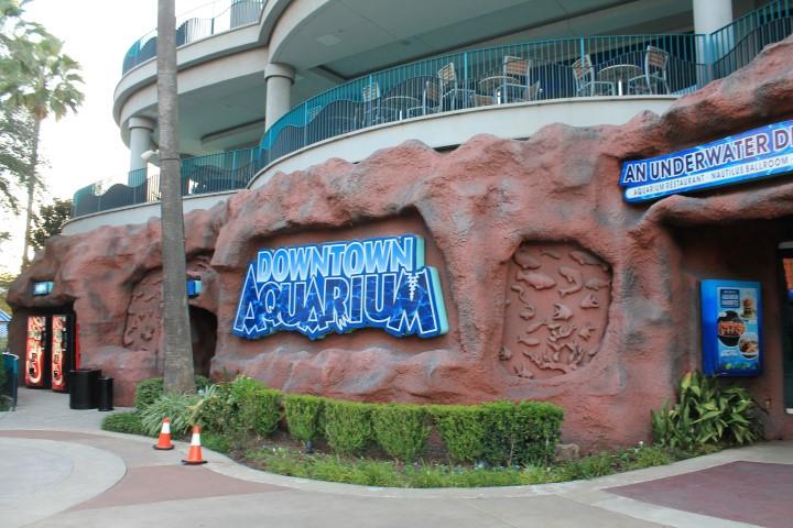 Houston-Aquarium1.JPG
