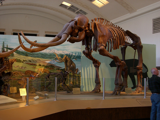 Utah-Museum-of-Natural-History.jpg