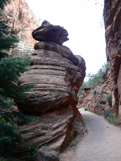 Zion-National-Park10.JPG