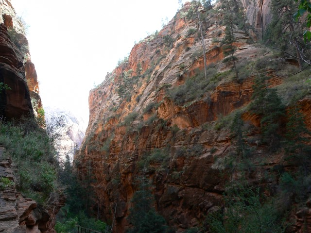 Zion-National-Park11.JPG