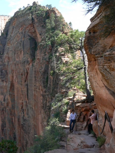 Zion-National-Park13.JPG