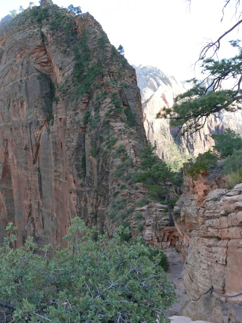 Zion-National-Park26.JPG