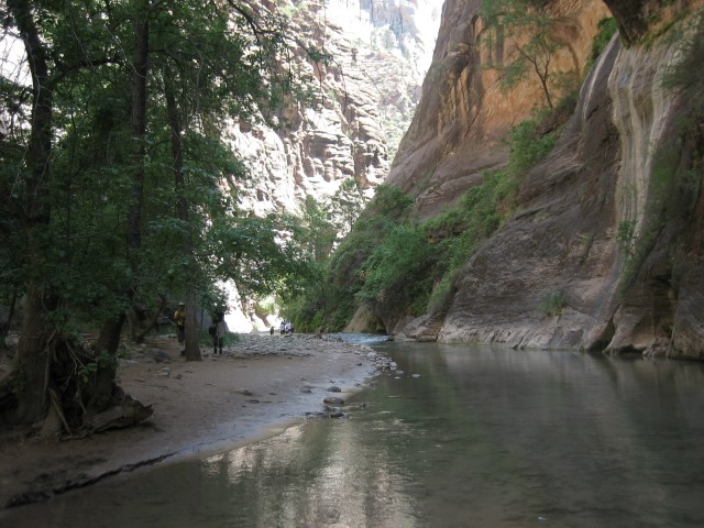 Zion-National-Park33.jpg