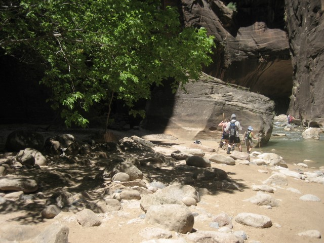 Zion-National-Park39.jpg