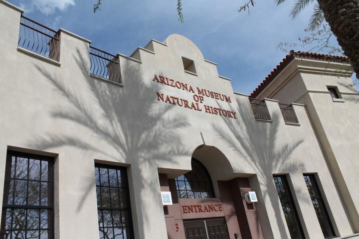 Arizona-Museum-of-Natural-History.JPG