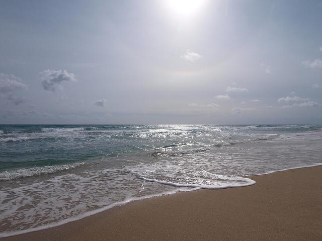 West-Palm-Beach.jpg