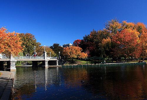 boston-fall.jpg