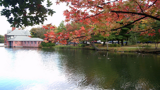 Providence_Fall.jpg