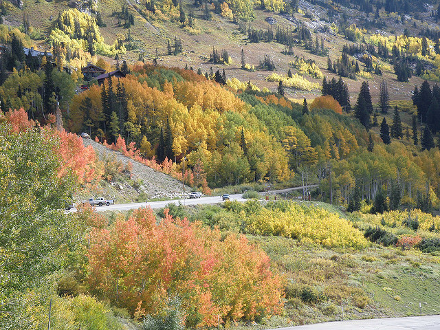 Salt-Lake-City-Fall.jpg