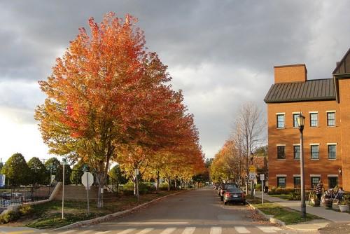 Burlington02.jpg