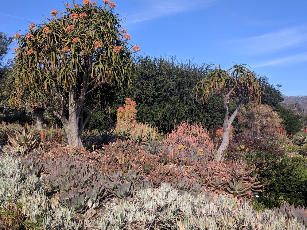 arboretum-fall-02.jpg