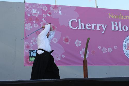 san_francisco_cherry.jpg