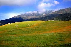 kern_county.jpg