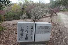 plum-blossom-01.jpg