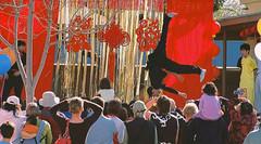 albany-chinese-new-year.jpg