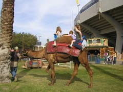 riverside-county-fair1.JPG