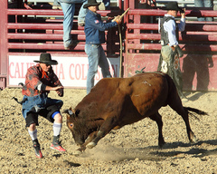 CaliforniaCircuitFinalRodeo.jpg