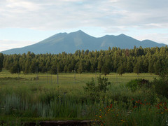 The_Arboretum_At_Flagstaff.jpg