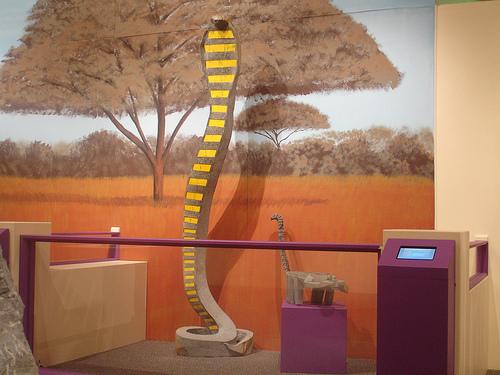 arizona_museum_for_youth.jpg