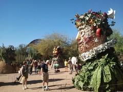 desert-botanical-garden1.jpg