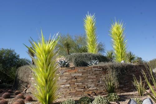desert-botanical-garden2.JPG