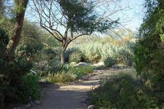 Tucson-Botanical-Gardens-01.jpg