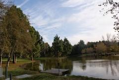 yorba-regional-park-1.JPG