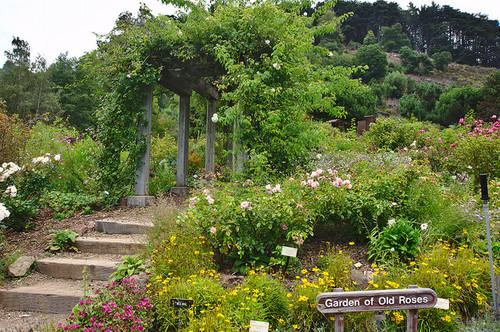 UC-Berkeley-Botanical-Garden-02.jpg
