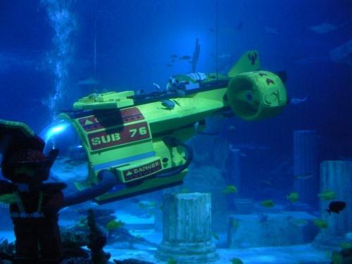 sea_life_aquarium8.jpg