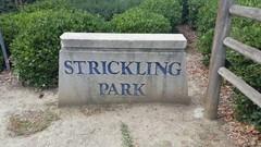 Strickling-Park1.jpg