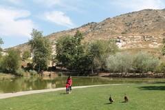 mary-vagal-nature-center1.JPG