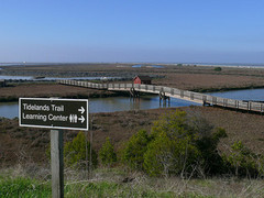 san_francisco_bay_wildlife_refuge.jpg