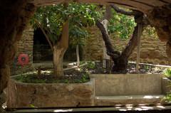Forestiere-Underground-Gardens-01.jpg