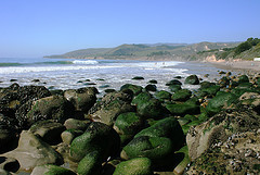El_Capitan_State_Beach.jpg