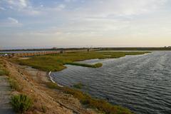 Bolsa-Chica-Ecological-Reserve.jpg