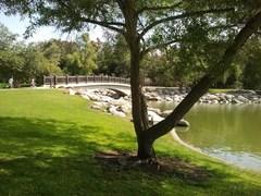willaim_mason_regional_park1.jpg